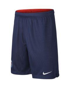 Nike Youth PSG Short