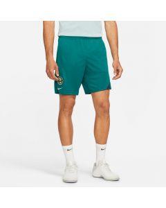 Nike Club América Academy Pro Men's Knit Shorts