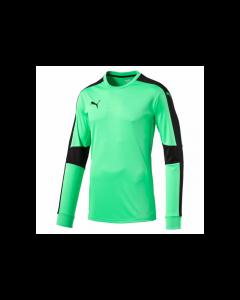Puma Youth Triumphant GK Shirt