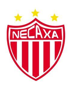 Necaxa Flag