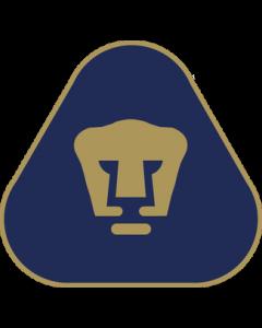Pumas Flag