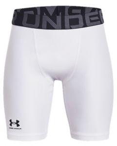 UA Boys' HeatGear® Armour Shorts
